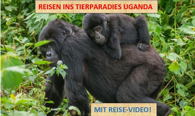 Uganda_Text