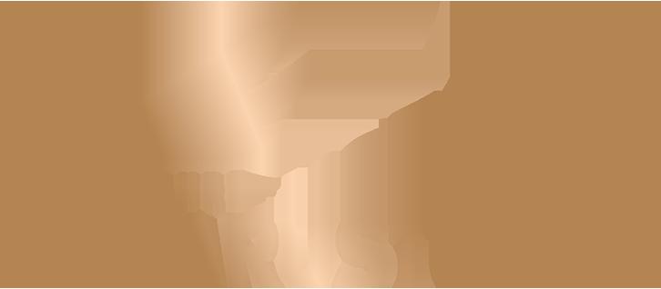 Logo Ikarus Reisen
