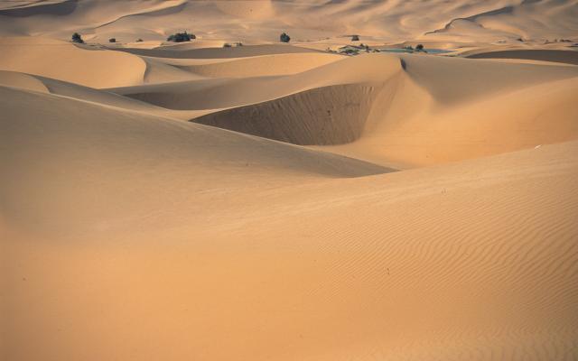 Die goldgelben Dünen des Erg Chebbi, Südmarokko