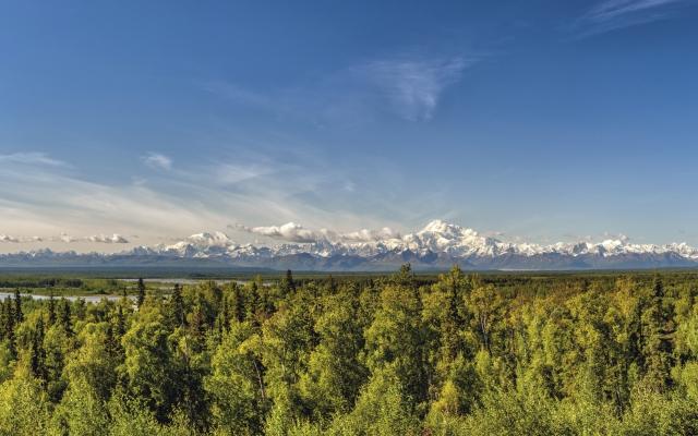 Fantastischer Blick auf den Denali-Nationalpark