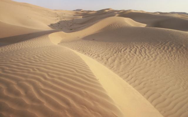 In der Wüste unterwegs