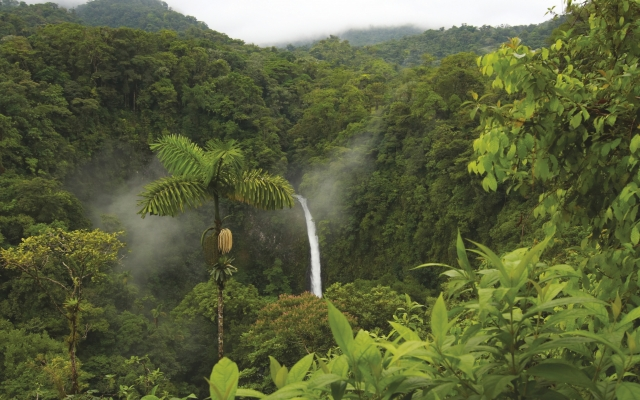 Der Wasserfall La Fortuna