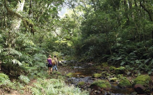 Amboro-Nationalpark